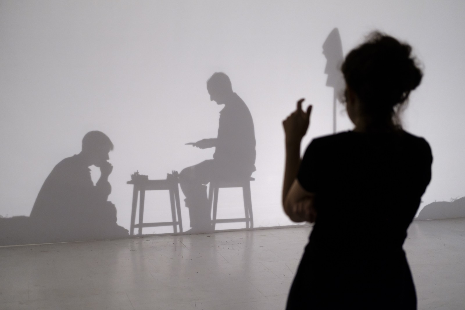 Yael Vishnizki-Levi, Polen, Bildende Kunst/Film